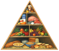 Food Pyramid Logo